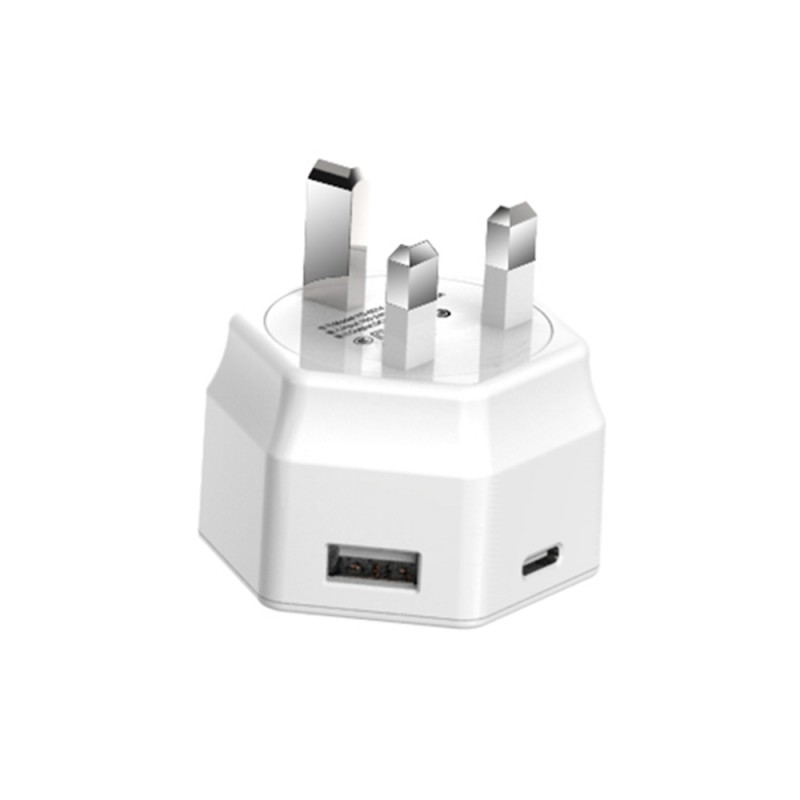 15W Dual Port Travel Charger with Type-C Port