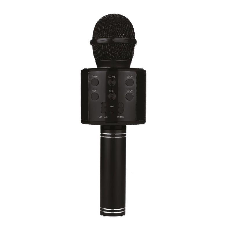 Wireless Microphone Karaoke